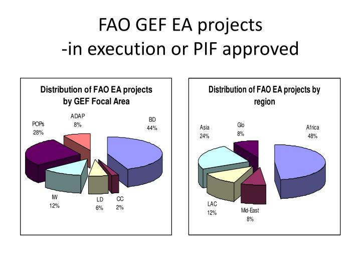 FAO GEF EA projects
