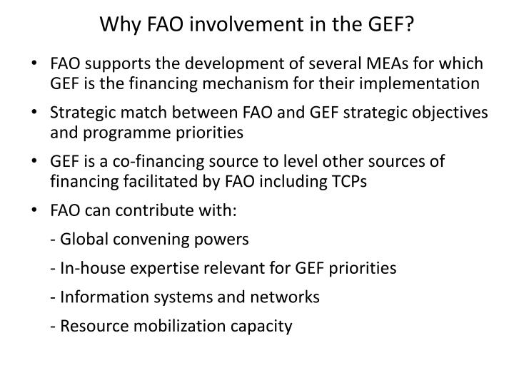 Why fao involvement in the gef