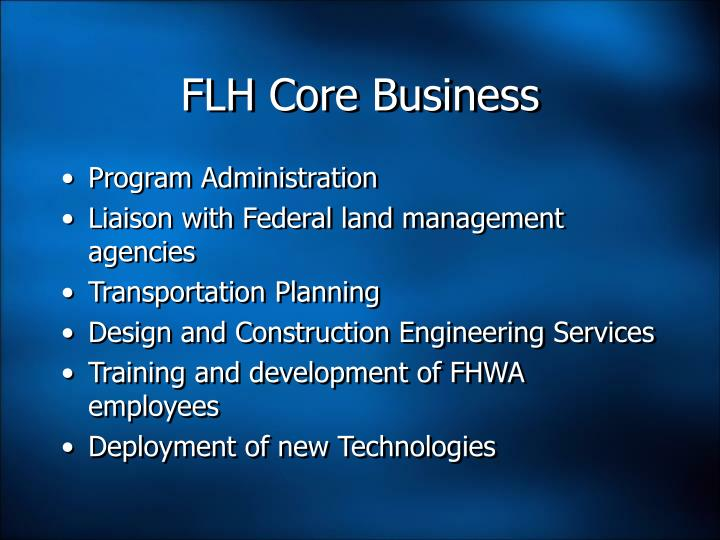 FLH Core Business