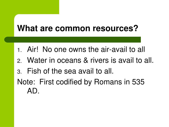 What are common resources?