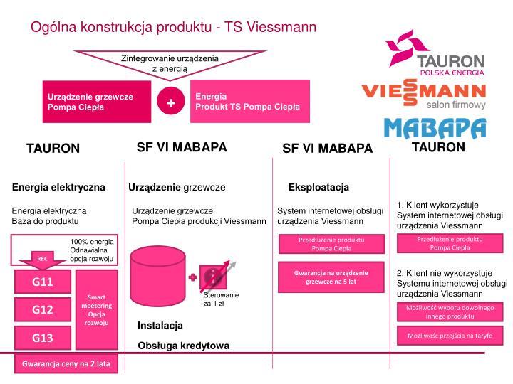 Ogólna konstrukcja produktu - TS Viessmann