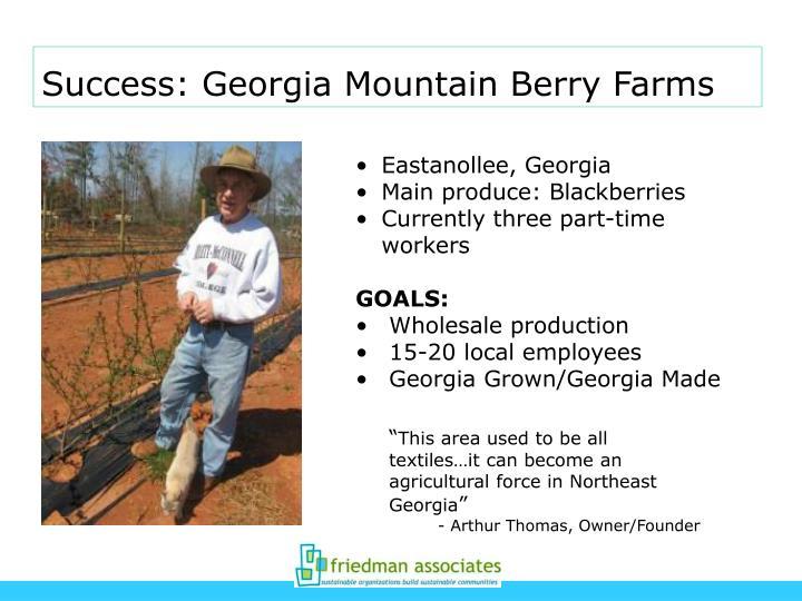 Success: Georgia Mountain Berry Farms