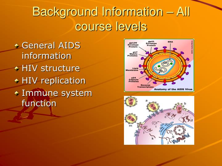 Background Information – All course levels