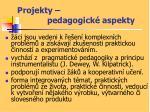 projekty pedagogick aspekty