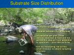 substrate size distribution