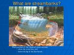 what are streambanks