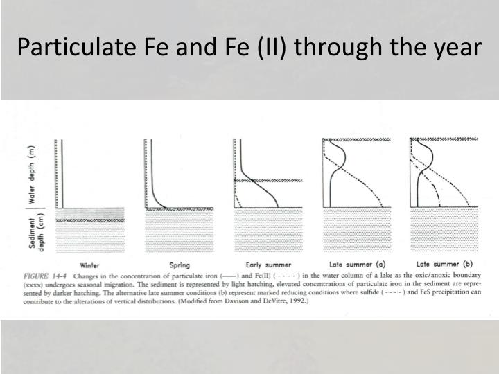 Particulate Fe and Fe (II) through the year