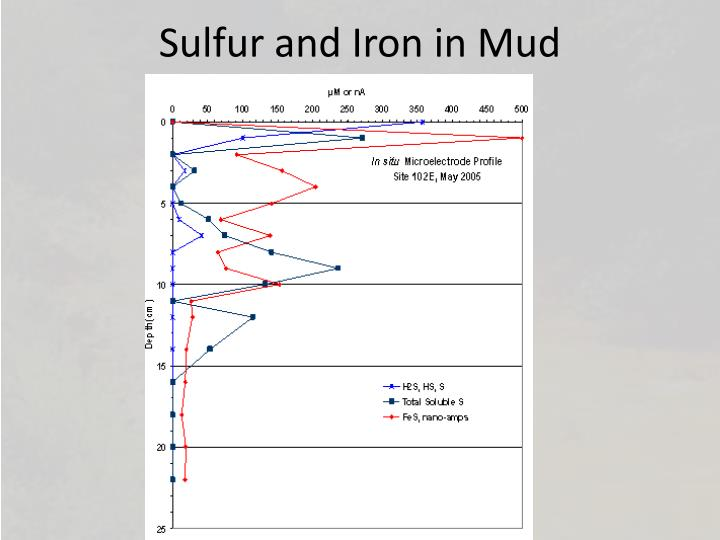 Sulfur and Iron in Mud