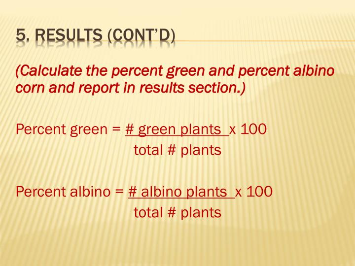 (Calculate the percent green and percent albino corn and report in results section.)