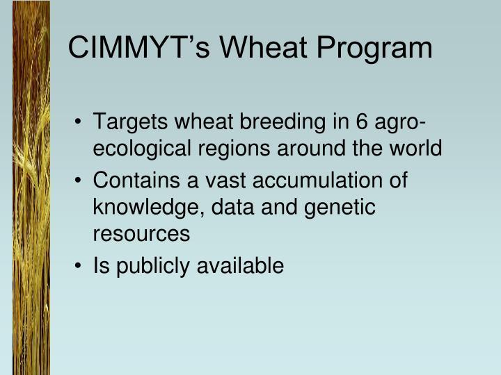 CIMMYT's Wheat Program