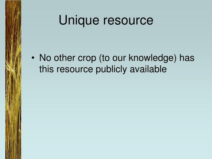 Unique resource