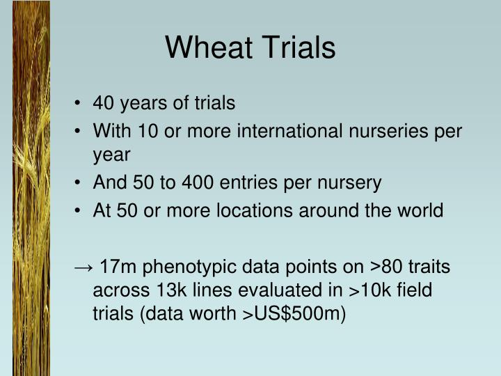 Wheat Trials