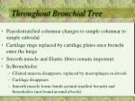 throughout bronchial tree