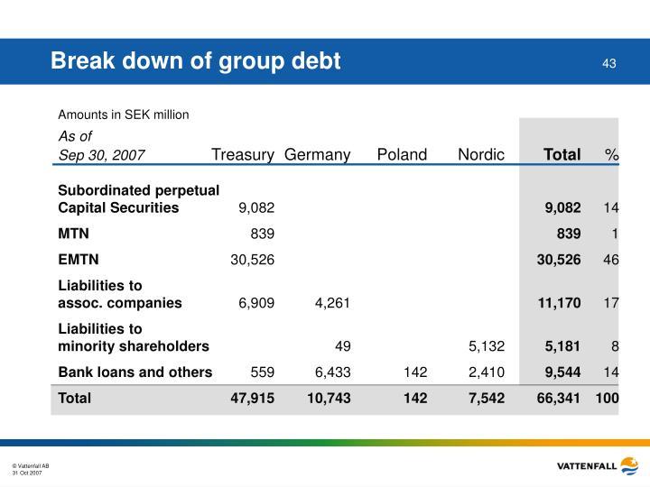 Break down of group debt