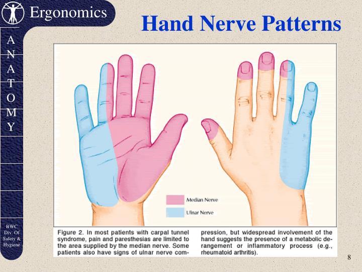 Hand Nerve Patterns