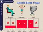 muscle blood usage