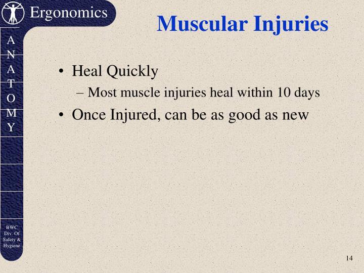 Muscular Injuries