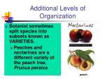 additional levels of organization