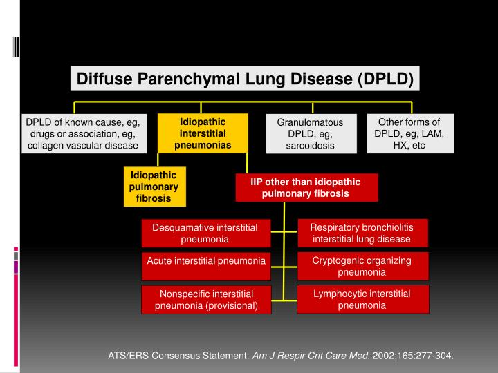 Diffuse Parenchymal Lung Disease (DPLD)