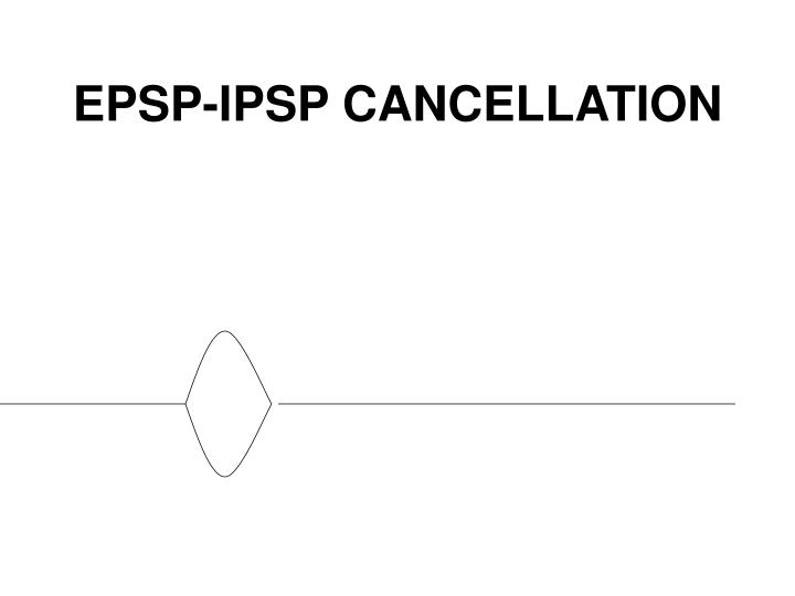 EPSP-IPSP CANCELLATION