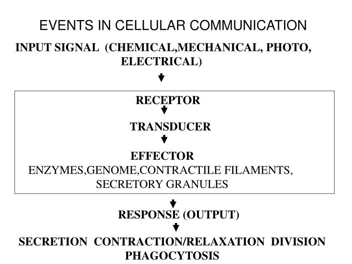 EVENTS IN CELLULAR COMMUNICATION