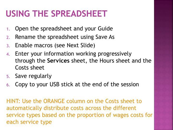 Using the Spreadsheet