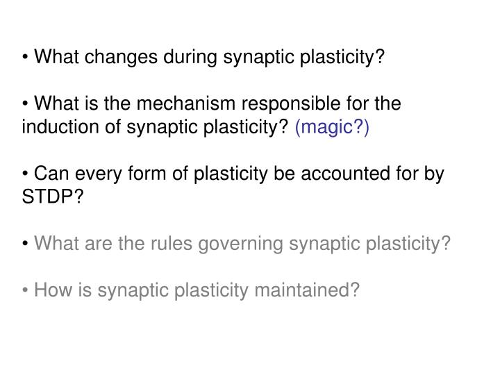 What changes during synaptic plasticity?