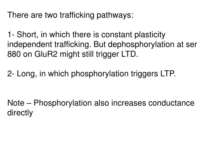 There are two trafficking pathways: