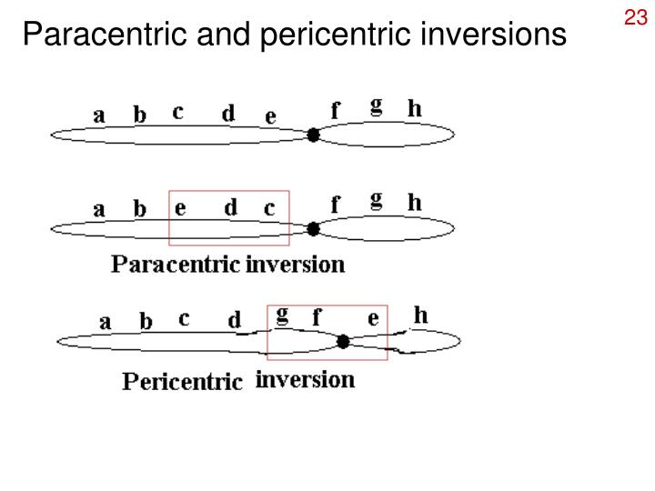 Paracentric and pericentric inversions