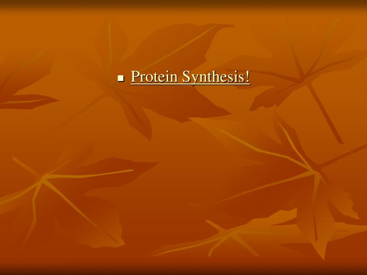 Protein Synthesis!