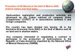 promotion of oil blocks in the gulf of mexico eez shallow waters and land areas
