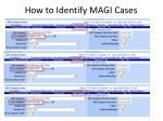 how to identify magi cases2