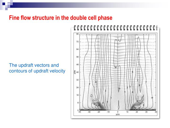 Fine flow structure in the double cell phase