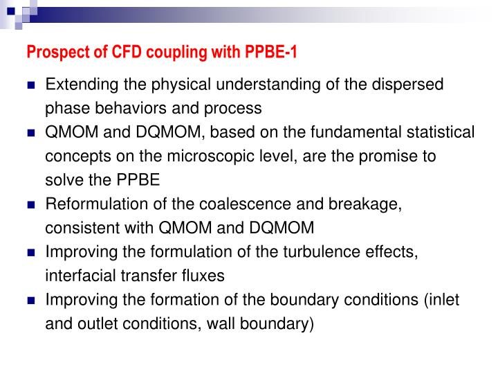 Prospect of CFD coupling with PPBE-1