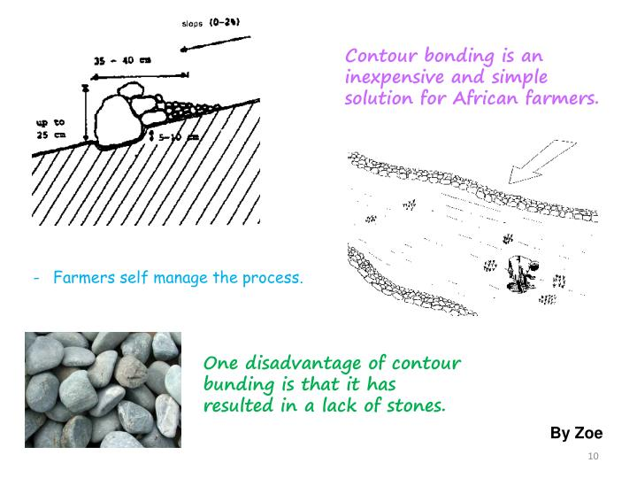 Contour bonding is an inexpensive and simple solution for African farmers.