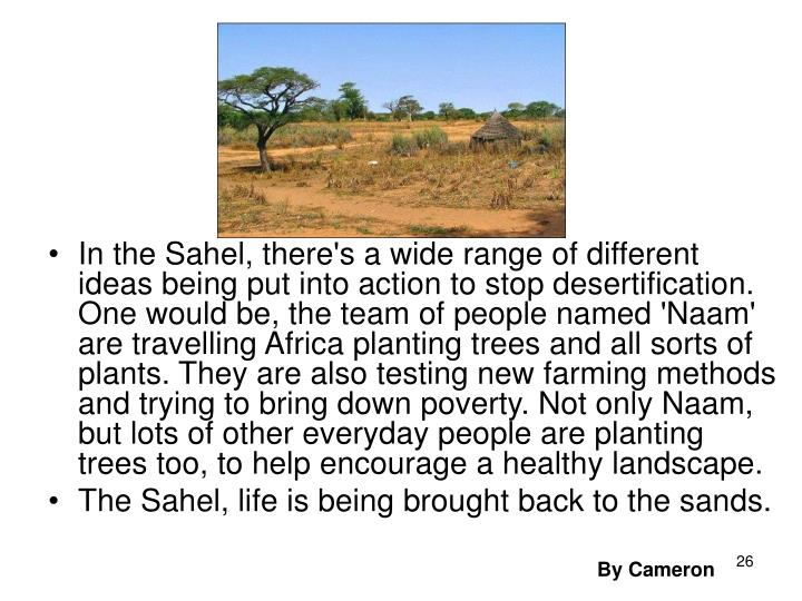 In the Sahel, there's a wide range of different ideas being put into action to stop desertification. One would be, the team of people named 'Naam' are travelling Africa planting trees and all sorts of plants. They are also testing new farming methods and trying to bring down poverty. Not only Naam, but lots of other everyday people are planting trees too, to help encourage a healthy landscape.