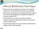 mincut bottleneck technique