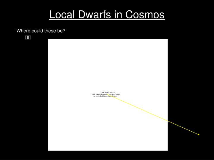 Local Dwarfs in Cosmos