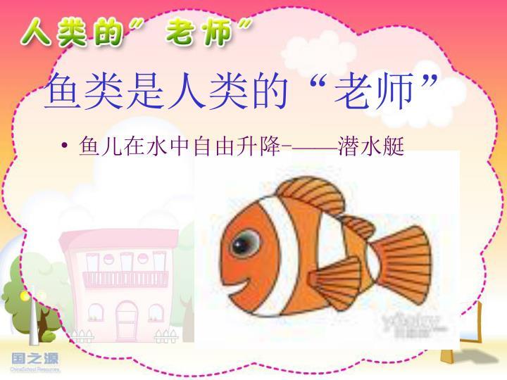 """鱼类是人类的""""老师"""""""