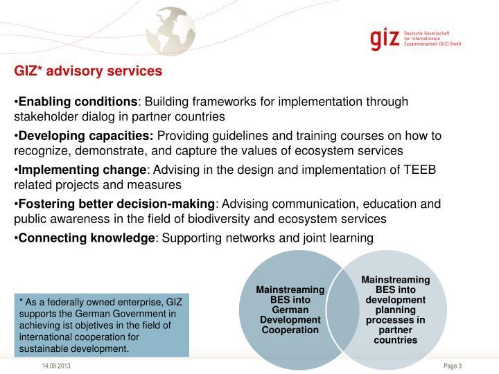 GIZ* advisory services