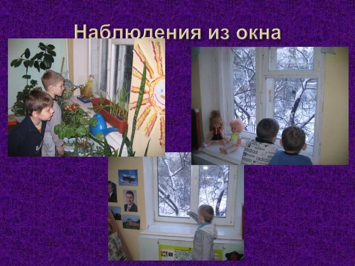 Наблюдения из окна