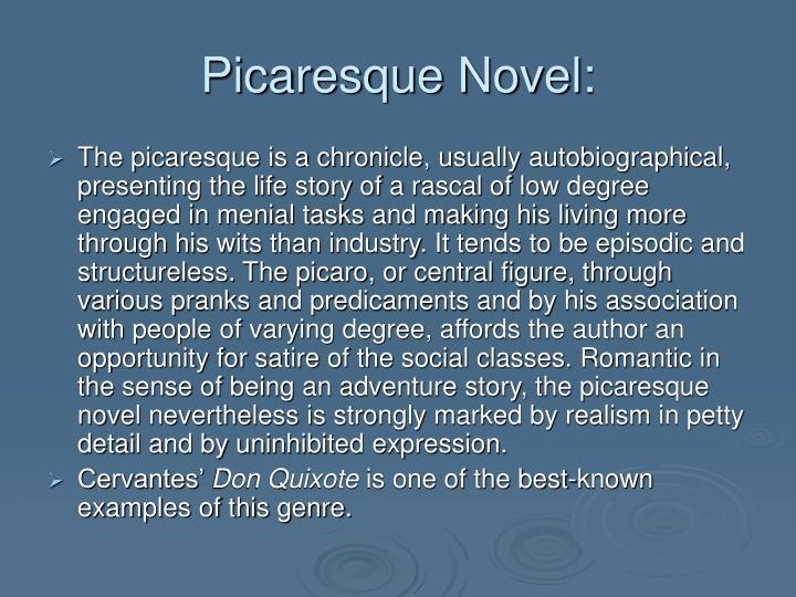 Picaresque Novel: