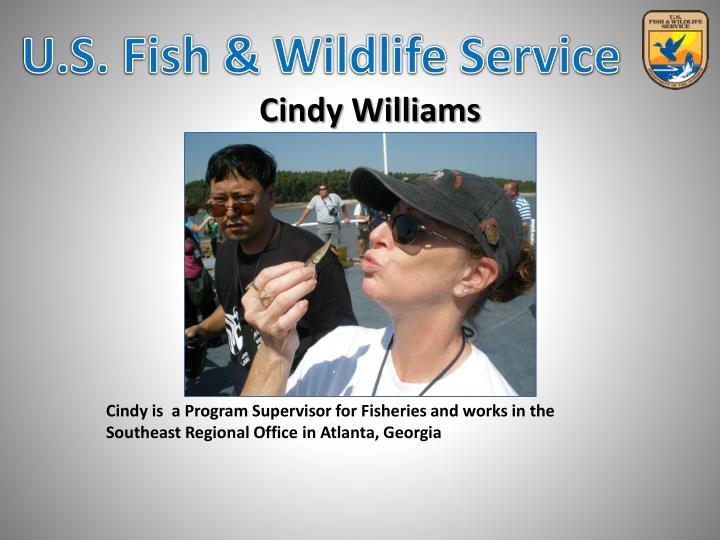 Cindy is  a Program