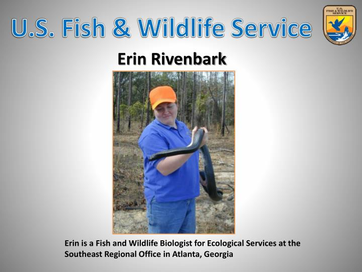Erin is a Fish