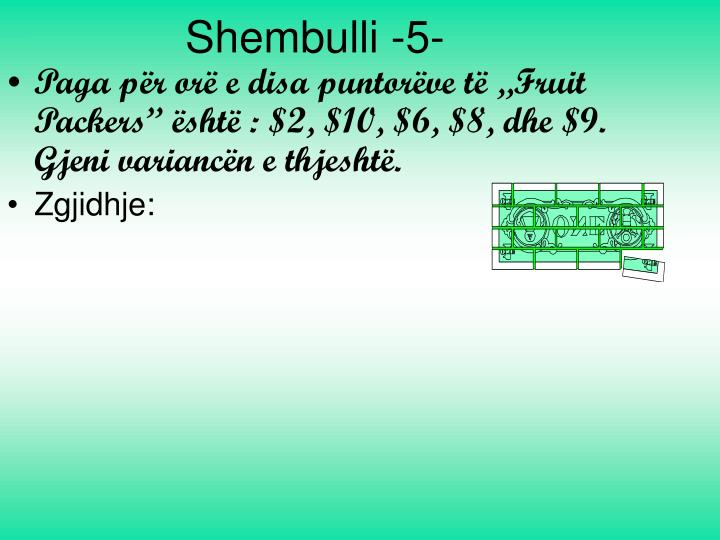 Shembulli -5-