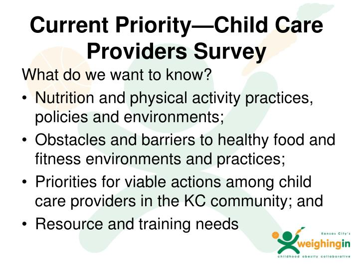 Current Priority—Child Care Providers Survey