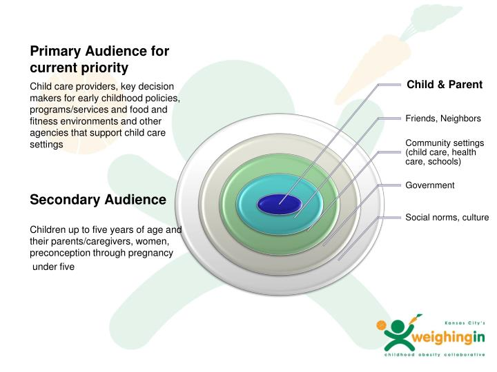 Primary Audience for current priority