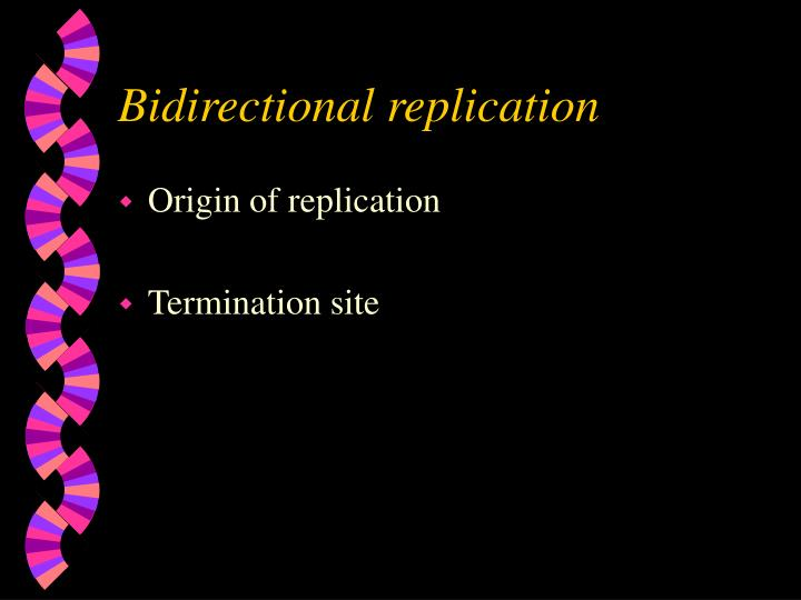 Bidirectional replication