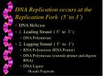 dna replication occurs at the replication fork 5 to 3
