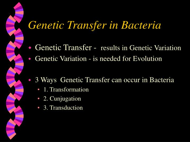 Genetic Transfer in Bacteria